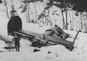 Tail section wreckage